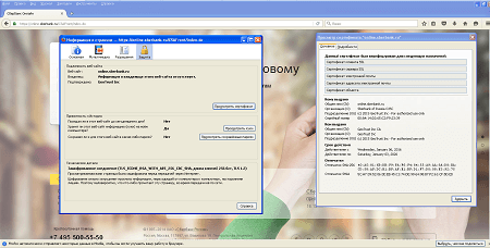 screen Trojan.Proxy2.102 #drweb